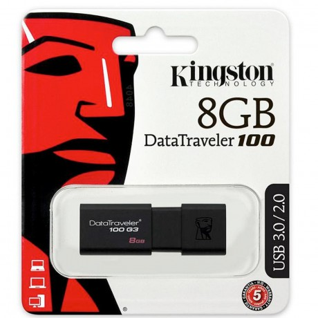Kingston DataTravel 100